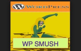 wordpress-WP Smush.it